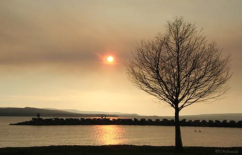sunset geotagged smoke arkansas forestfire lakedardanelle zormsk superaplus aplusphoto tlmccormick