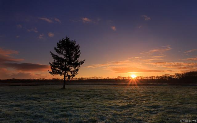 Harksteder sunrise