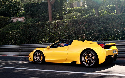 A Special Yellow Prancing Horse