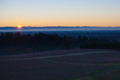 mountains sunrise cascades redhillsvineyard willamettevalleynewberg dundeehillsviticulturearea vineyardskyredhills