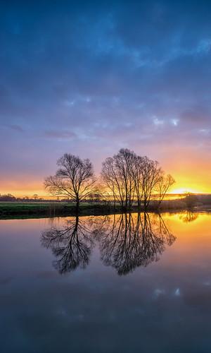 trees light silhouette zeiss sunrise river landscape dawn sony worcestershire avon eckington a7ii 1635mmf4 jactoll