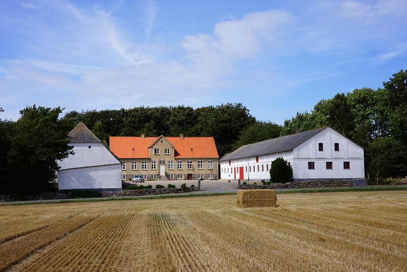 Tjoernbjerg-Marker-2014 (18)