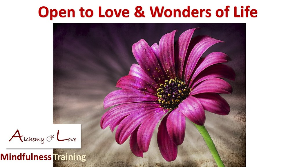 Open to love and wonders of life from AoL Mindfulness Courses by Nataša Pantović