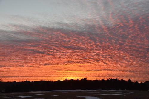 winter sunset silhouette landscape illinois nikon wauconda nikkor18200mm stevelamb d7200