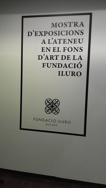 Mostra d'Exposicions a la Fundació Iluro