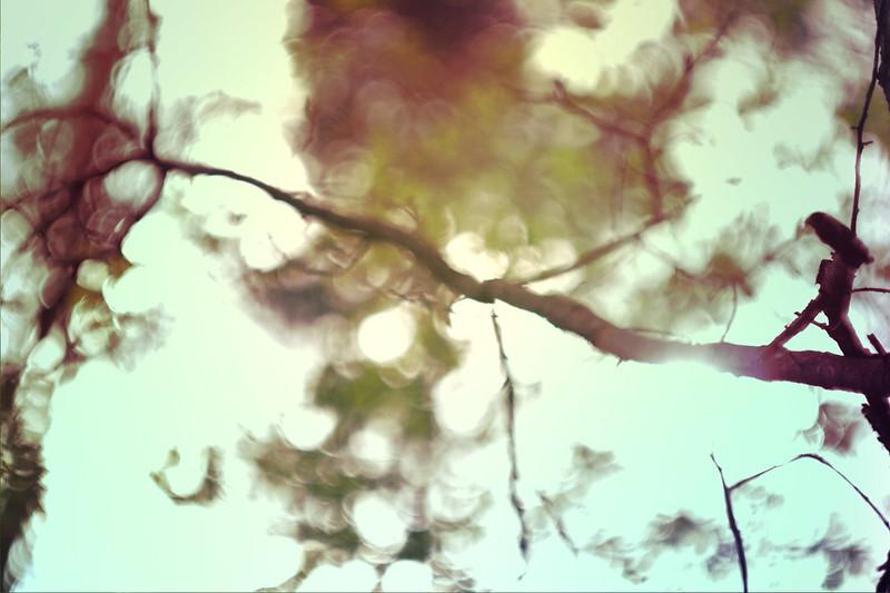 blur-dreamy-texture-texturepalace-55