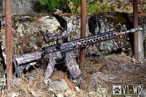 Valdyr V1-WD AR-15 Rifle Skin