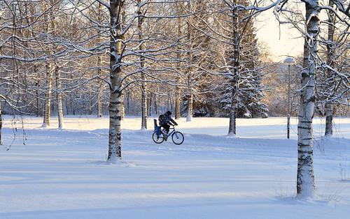 winter frost cyclist finland suomi pyöräilijä pakkanen nikon landscape maisema winterwonderland trees talvi cold nature luonto coldweather bike d3200 nikond3200 europe
