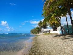 A Beach On The Caribbean In Puerto Rico