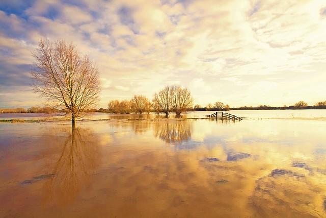 Langport floods