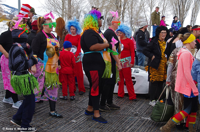 Monster Polar Plunge Costume Contestants