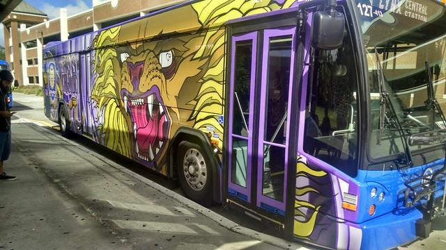 Lynx Buses