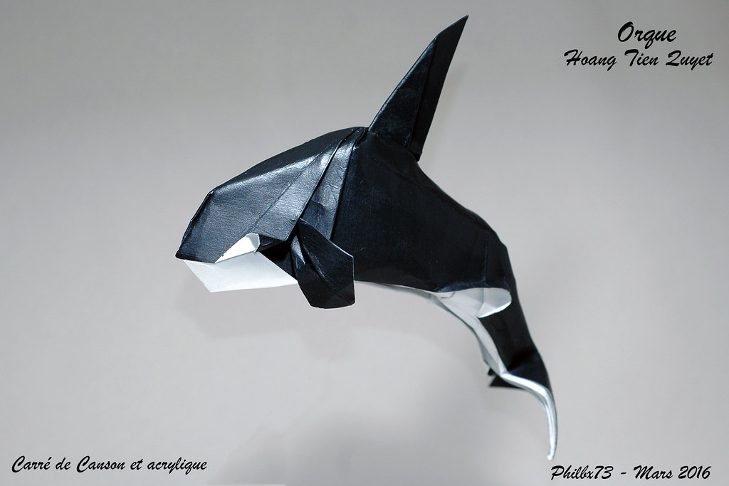 Animal origami vector - Download Free Vectors, Clipart Graphics ... | 683x1024