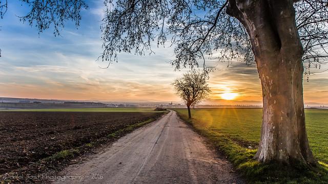 The way...