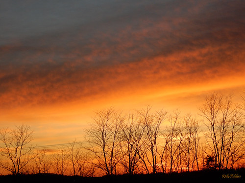 trees sunset clouds treesilhouette westvirginia orangesky treeline sunsetclouds rcvernors barboursvillewv cabellcountywv rickchilders treesilhouettesagainstorange treesilhouettesagainstorangesky