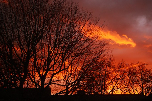 Dulwich sunset