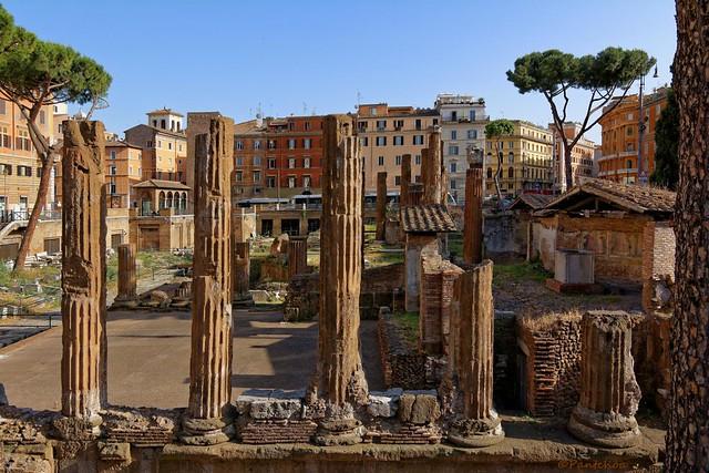 Rome : Largo di Torre Argentina