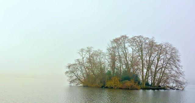 Green Lake - Duck Island - fog