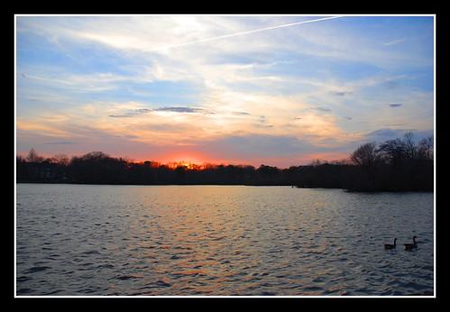 sunset lake water beautiful duck explore diamondclassphotographer flickrdiamond