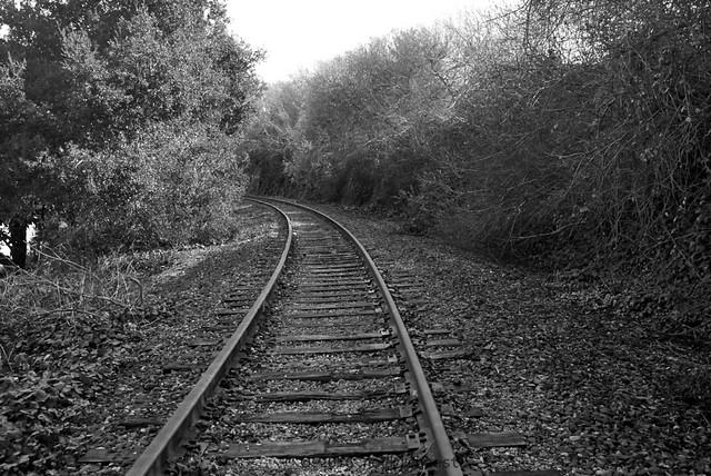 rail_L1065121 1