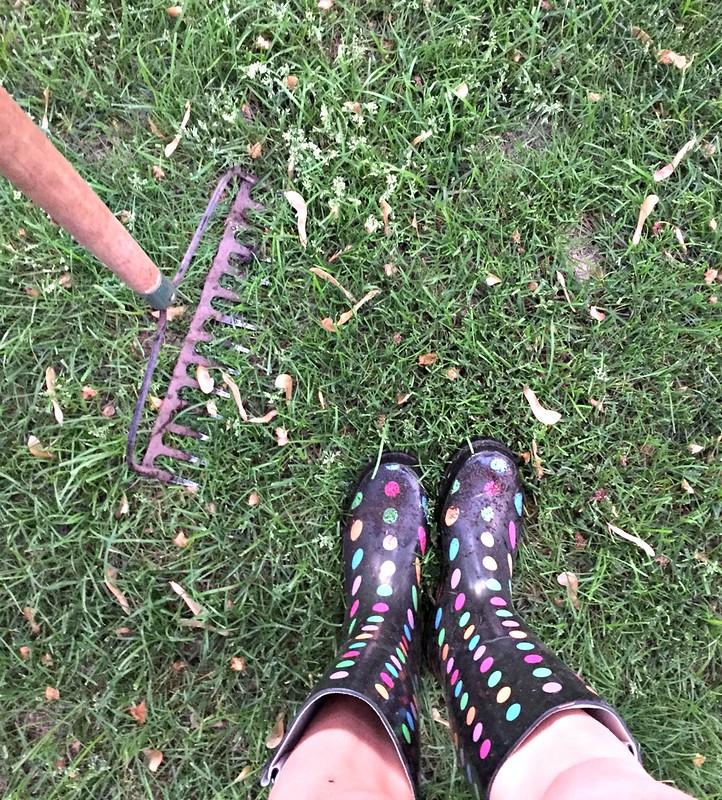 polkadot gardening boots
