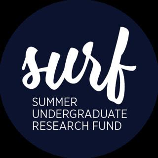surf3 logo