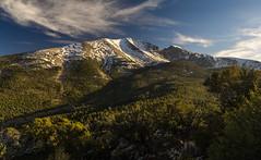 Great Basin Pano 1