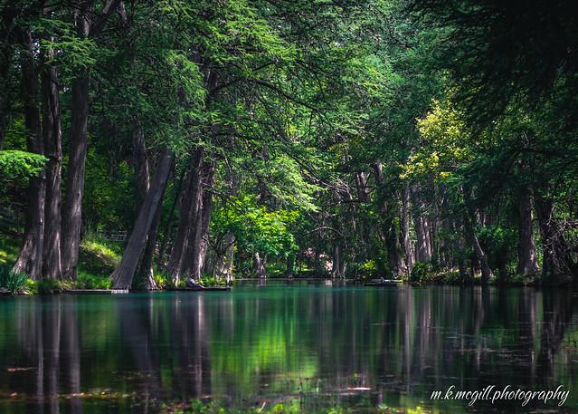 leakey swamp