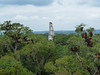 Tikal, výhled z Mundo Perdido, pyramida III, foto: Petr Nejedlý
