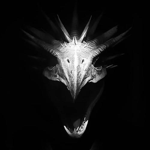 Hungarian horntail #dragon #monster #harrypotter #exhibition #blackandwhite #bw #scary #dark #portrait quasi #igers #igersmilano #igersitalia #photooftheday #picoftheday #likes4follow #instagood | by Mario De Carli
