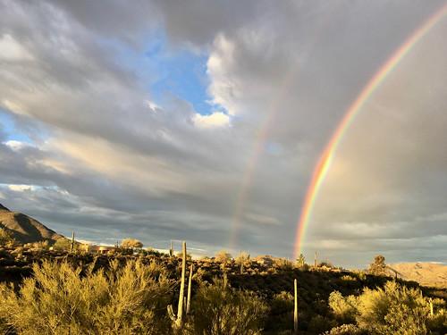 desertlandscape doublerainbow mesquite rainbow saguaro sunrise