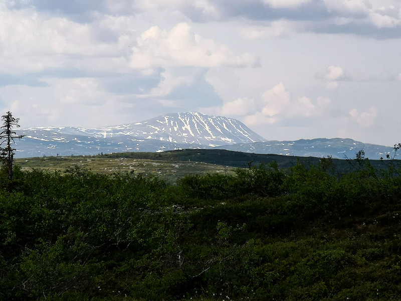 05-Utsikt mot Gaustatoppen