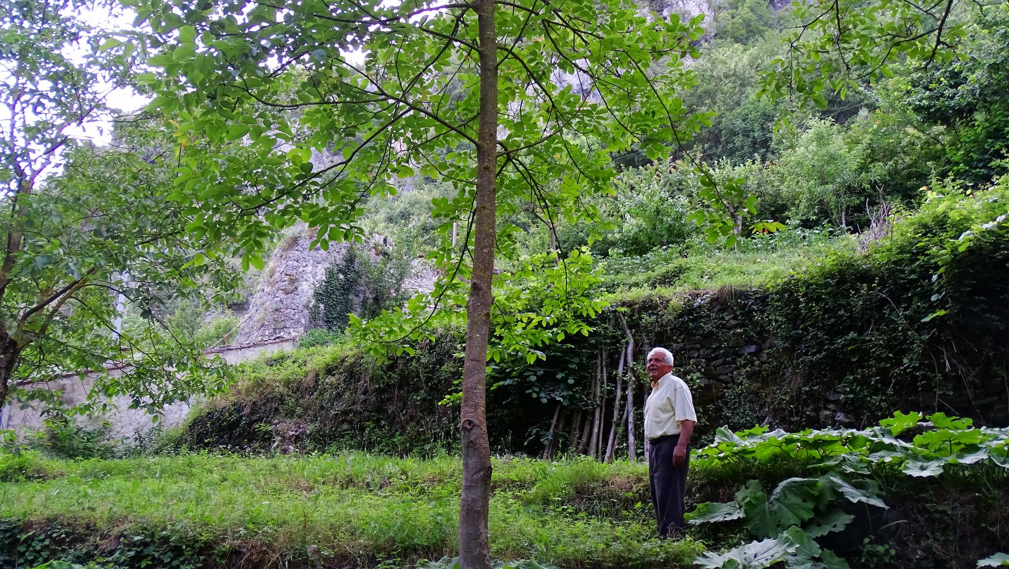 Mulino Borgia