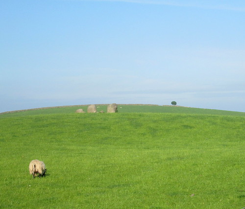 Torhouse  stone circle three stones + lollipop tree