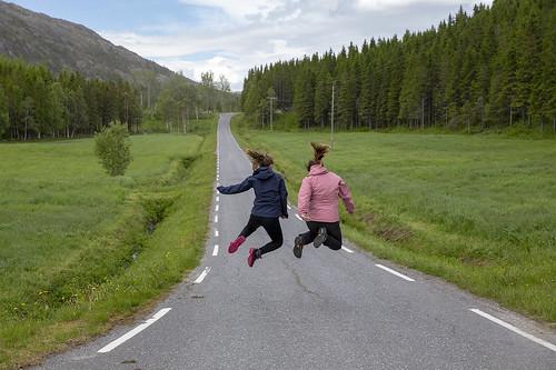 nordland norway no hopp sprett vei skog norge northernnorway