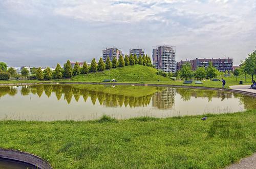 parcoindustriaalfaromeo portello milano milan tree albero oasi oasis greenery park parco verde green reflection riflessi filippo filippobianchi mirror water acqua nikon d610