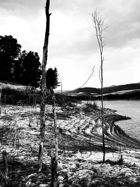 Riemersi #siccità #diga