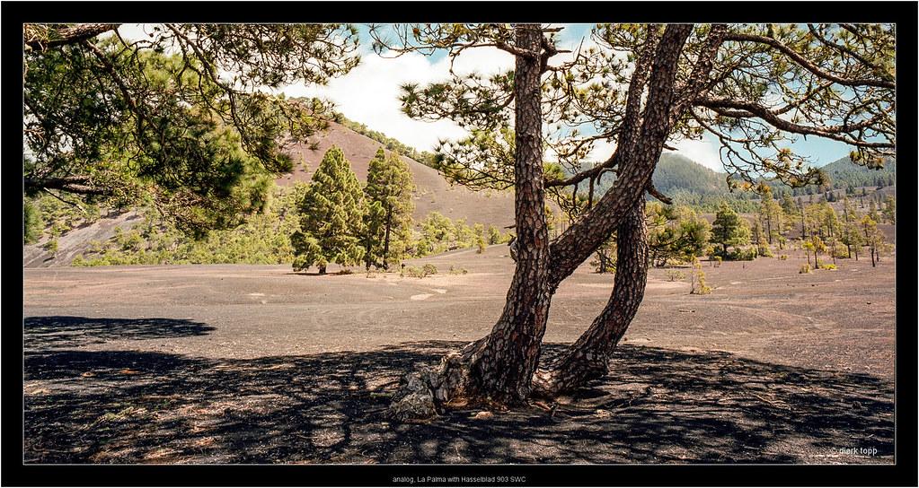 analog, La Palma with Hasselblad 903 SWC