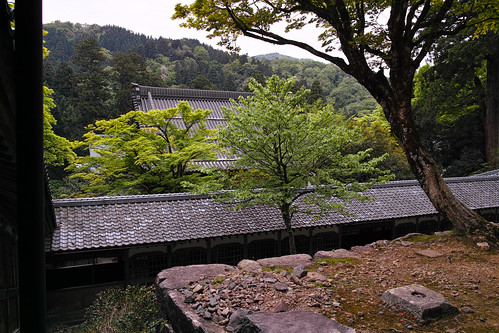 sigmadp1merrill green japan hokuriku fukui eiheiji