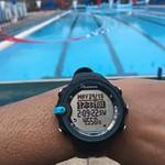 Day 4 swim nailed - dodgy timekeeping