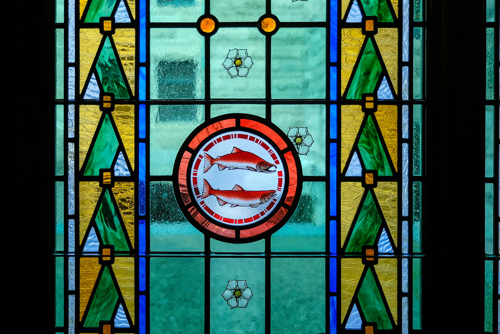 Province Establishes Wild Salmon Advisory Council | To prote