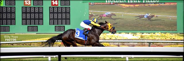 Big Champion - 2018 Albany Stakes