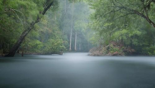 landscape longexposure rain inspirational lake water stream forest woods trees impressionist artistic dreamy dreamworld fantasy fantasyworld