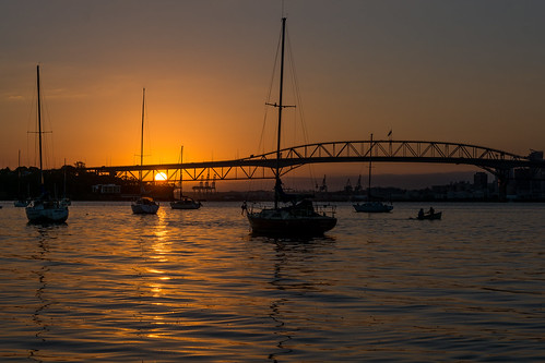 auckland bridge harbour silhouettes yachts boats goldenhour sunrise glow