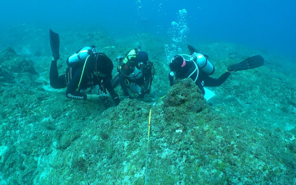 1997年民間自發性進行的珊瑚礁總體檢,累積厚實的資料;去年調查台灣珊瑚礁覆蓋率約30~50%之間。圖為小琉球珊瑚礁體檢現場。圖片來源:洪桂蓮提供