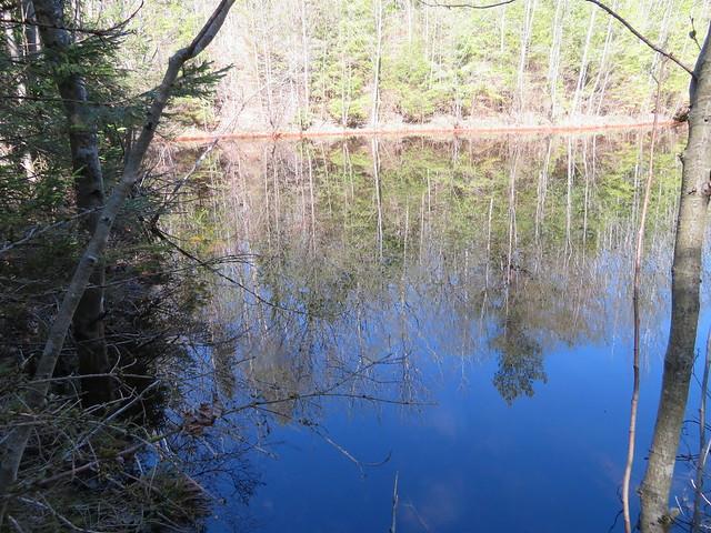 Küttejõu karjäär / Küttejõu oil shale surface mine, Estonia