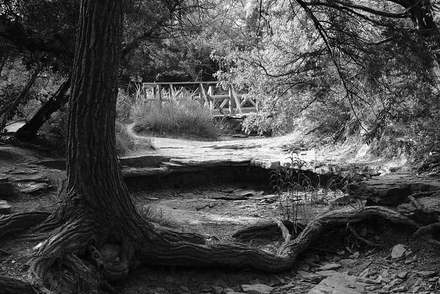Bridge Over Dry Creekbed