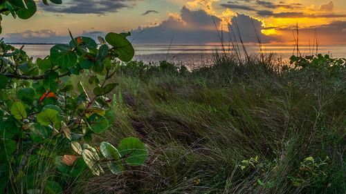 aurorahdr emersonpoint macphun palmetto sonyalpha clouds florida gulfcoast landscapephotography manateecounty unitedstates us