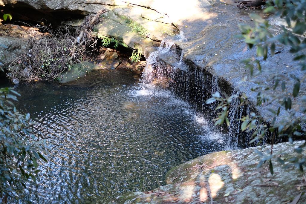 Terry's creek waterfall