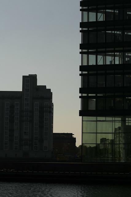 Early Bird enjoying Urban Sun...